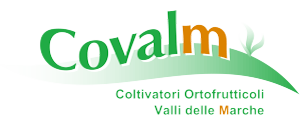 COVALM